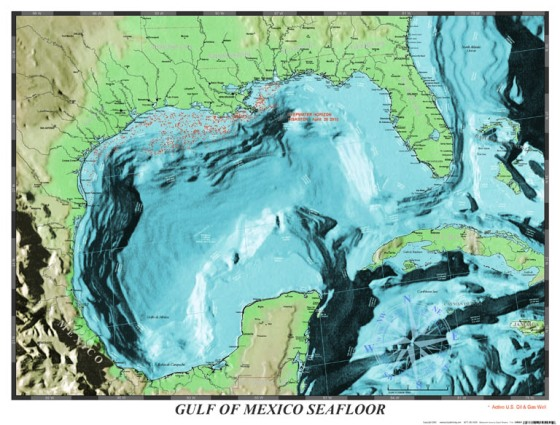 Gulf of Mexico sea floorPhoto credit: Port Publishing